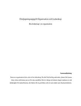 Bra ledarskap i en organisation