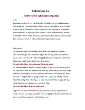 Nervsystem och Sinnesorganen - Labbrapport i Biologi B