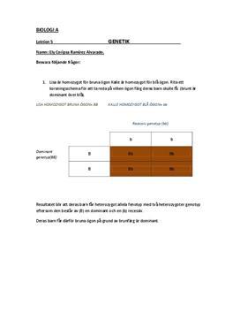 Korsningsschema och frågor kring genetik