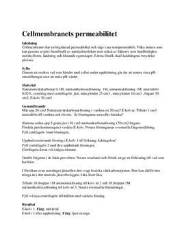 Labbrapport: Cellmembranets Permeabilitet - Biologi