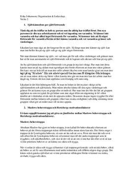 Organisation och Ledarskap - Uppsats på Svenska