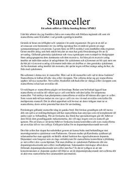 Naturkunskap Uppsats om Stamceller och Genetik