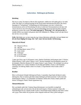 Labbrapport: Ballongen på flaskan (cellandning) - Naturkunskap 1b