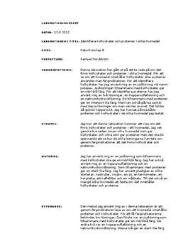 Labbrapport: Identifiera kolhydrater och proteiner