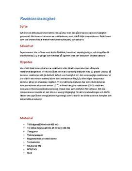 Labbrapport: Reaktionshastighet - Kemi 2