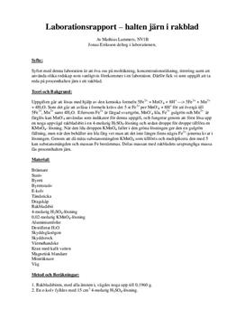 Halten järn i rakblad - Labbrapport i Kemi 2