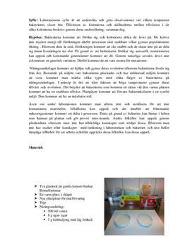 Odla bakterier | Labbrapport i Biologi 2