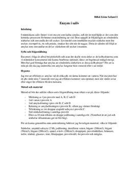 Enzymet amylas i saliv | Sönderdela stärkelse | Labbrapport | Naturkunskap 1b