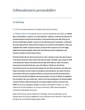 Permeabilitet i cellmembran | Rödbeta | Labbrapport i Biologi 2