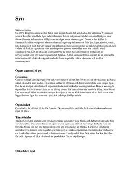 Ögat | Olika delar och funktioner | Syn och Sinnesorgan