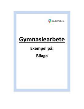 Bilaga | Exempel | Gymnasiearbete