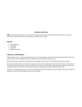 Centripetalkraft i roterande referenssystem | Labbrapport
