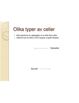 Celler och Mikroskop | PowerPoint-presentation