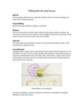 Odlingsförsök med krasse | Labbrapport
