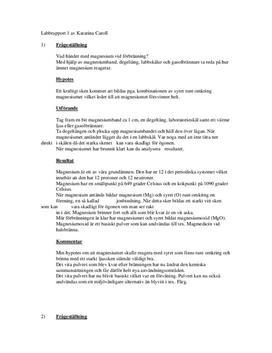 Diverse laborationer Kemi   Förbränning/Strömledning/Ytspänning   Labbrapport