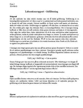 Gelfiltrering | Kemi 2 | Labbrapport