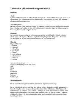 pH-undersökning med rödkål | Labbrapport