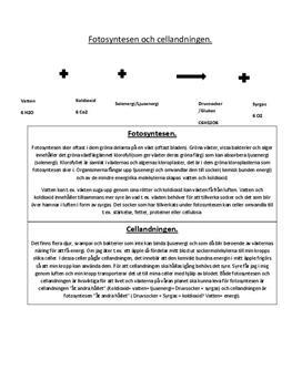 Cellandningen och fotosyntesen   Sammanfattning