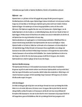 Cirkulationsorganen | Sammanfattning
