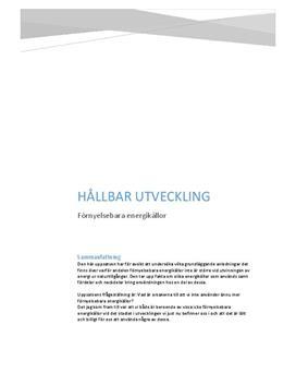 Hållbar utveckling: Förnyelsebar energi | Rapport