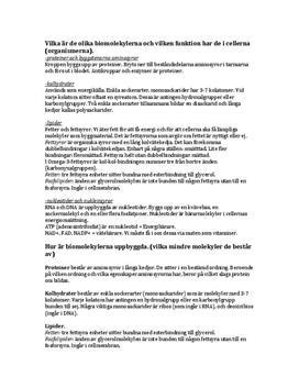 Biomolekyler och kemisk bindning | Sammanfattning