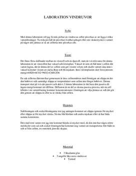 Osmos med vindruvor | Labbrapport