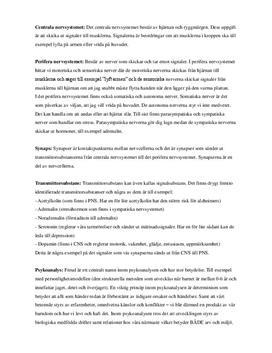 Begreppsförklaringar: biologisk, kognitiv, beteende- och psykodynamisk psykologi