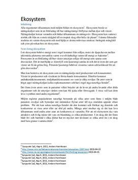 Magelungen - Ett ekosystem | Undersökning