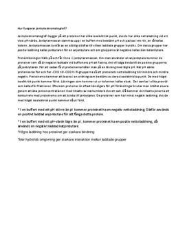 Jonbyteskromatografi | Sammanfattning