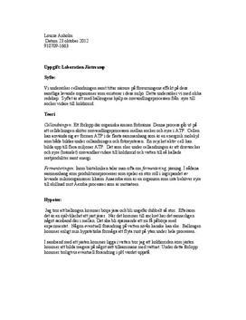 Jästsvamp | Labbrapport cellandning