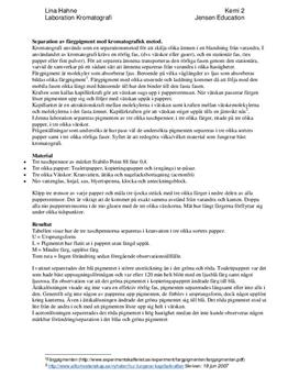 Separation av färgpigment med kromatografisk metod | Labbrapport