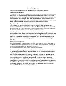Analysering av juridisk dom | Analys