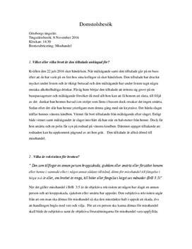 Domstolsbesök | Inlämningsuppgift